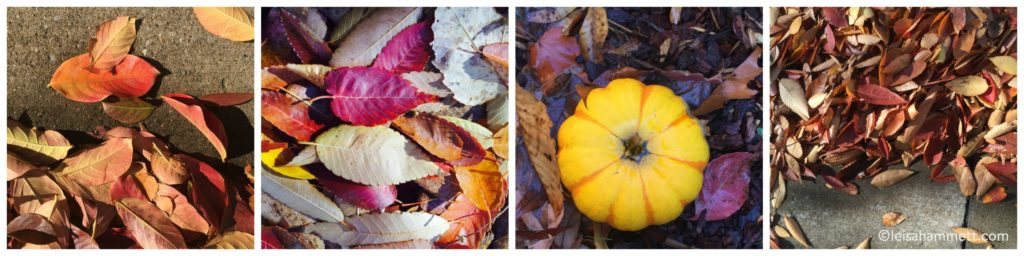 fall-collage leisahammett.com